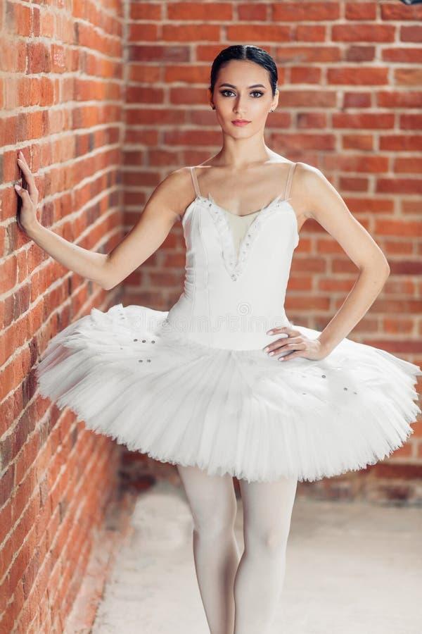 Bevallige knappe ballerina die zich over rode achtergrond bevinden stock foto