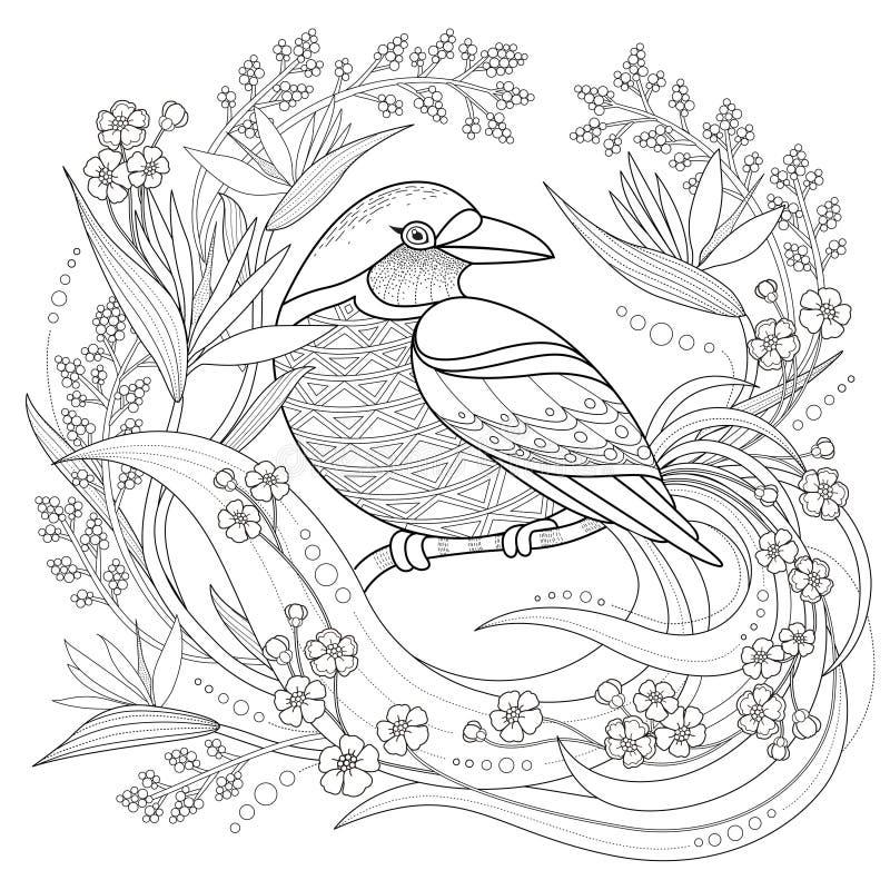 Bevallige vogel kleurende pagina vector illustratie