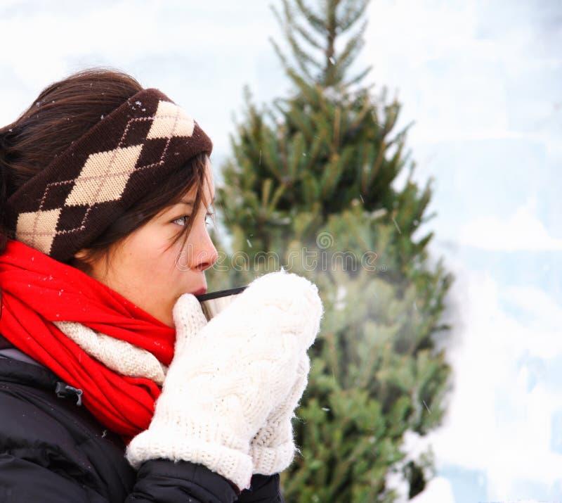 Bevanda calda di inverno fotografia stock libera da diritti