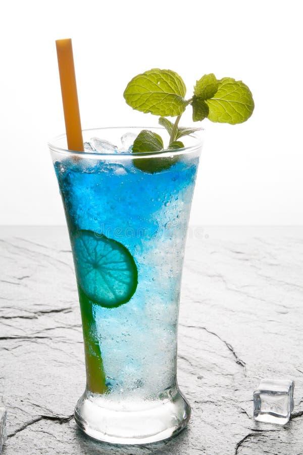 bevanda classica del bule del cocktail con calce immagine stock libera da diritti