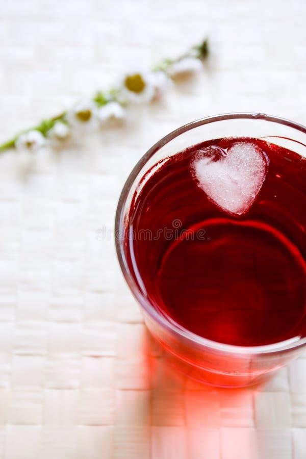 Bevanda con il cubo di ghiaccio fotografia stock libera da diritti