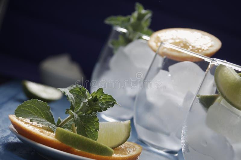 Bevanda con la menta fotografie stock