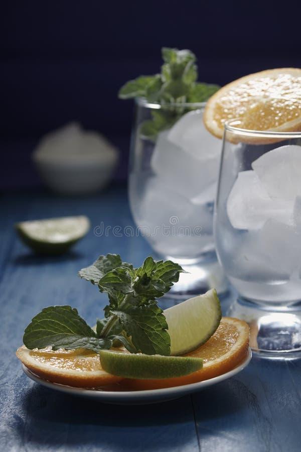 Bevanda con la menta fotografie stock libere da diritti