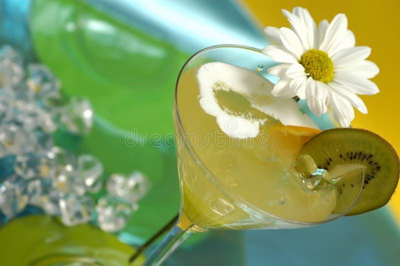 Bevanda del Martini fotografia stock