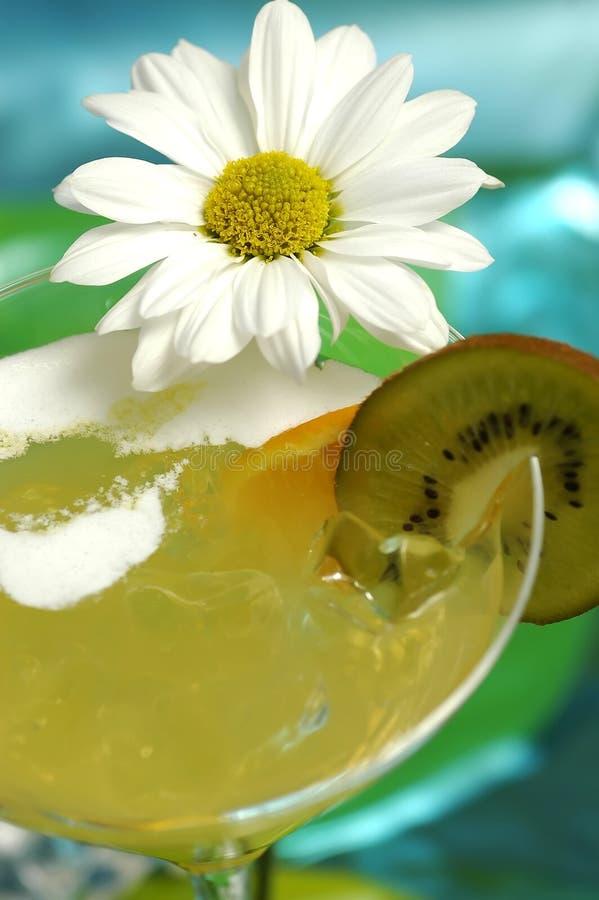 Bevanda del Martini immagine stock
