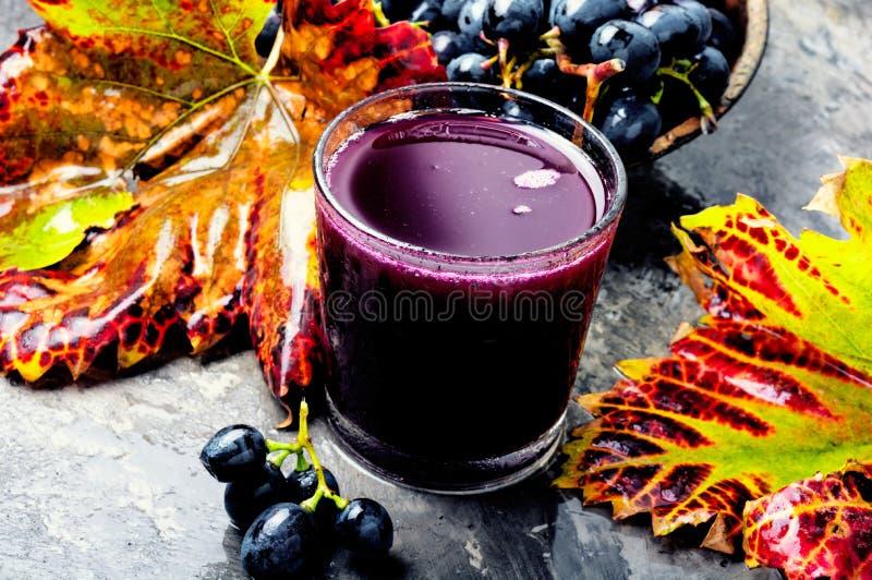 Bevanda dell'uva in un vetro fotografie stock