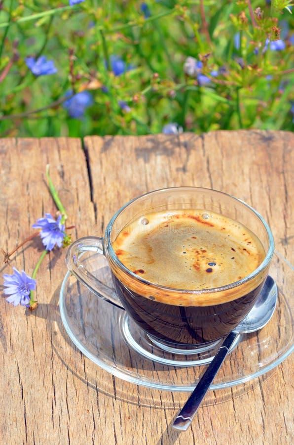 Bevanda della cicoria di dieta in una tazza immagini stock