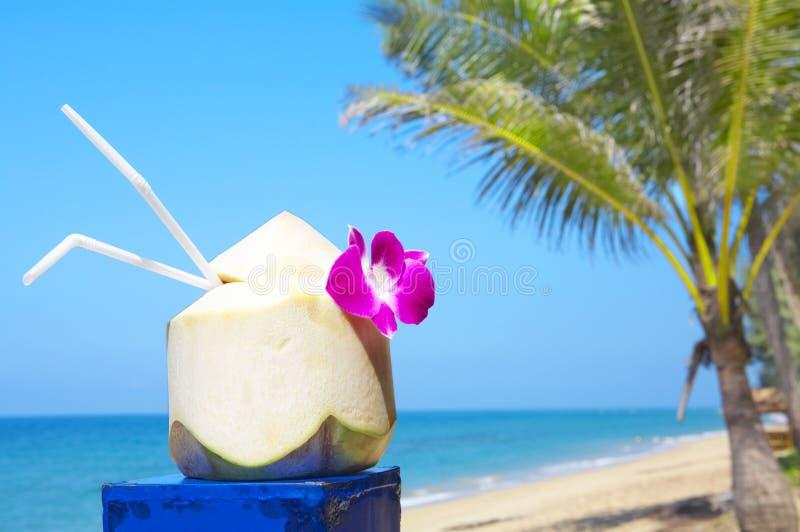 Bevanda della noce di cocco immagine stock
