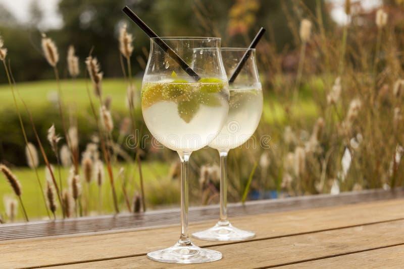 Bevanda di estate del ghiaccio della soda di sambuco di prosecco di Hugo fotografia stock