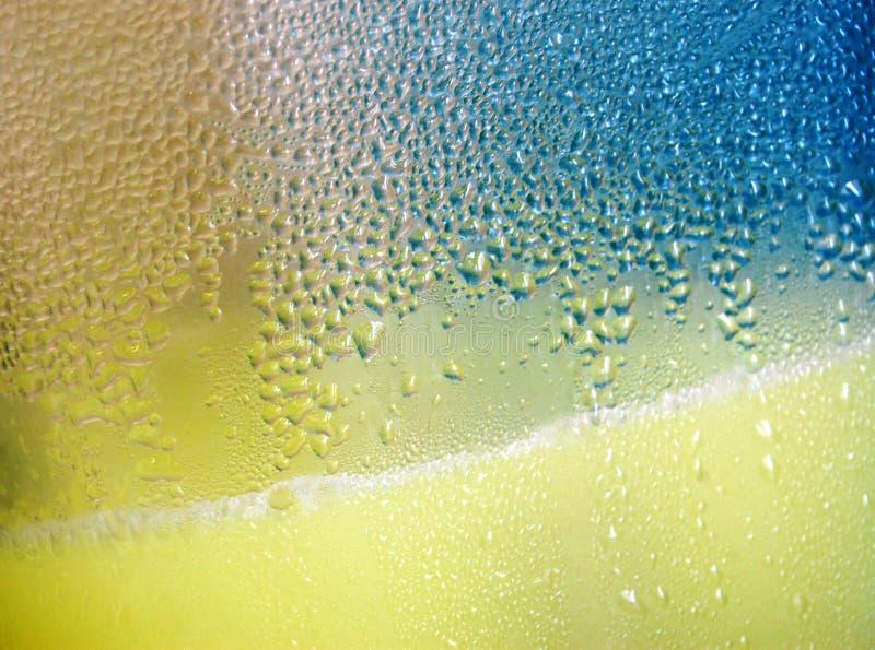 Bevanda di frutta di estate immagine stock