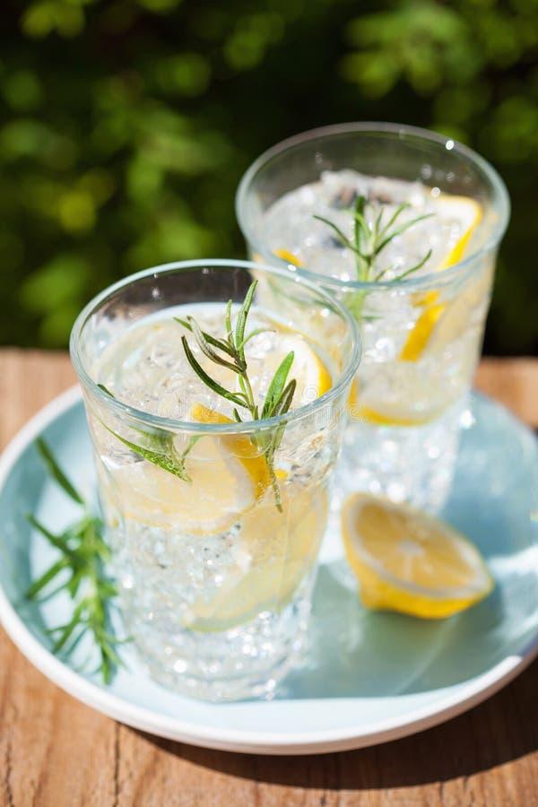 Bevanda di rinfresco della limonata con i rosmarini in vetri immagine stock libera da diritti