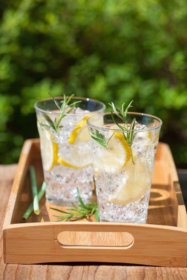 Bevanda di rinfresco della limonata con i rosmarini in vetri fotografia stock libera da diritti
