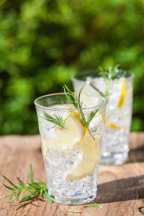 Bevanda di rinfresco della limonata con i rosmarini in vetri immagini stock libere da diritti