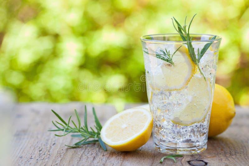 Bevanda di rinfresco della limonata con i rosmarini in vetri immagini stock