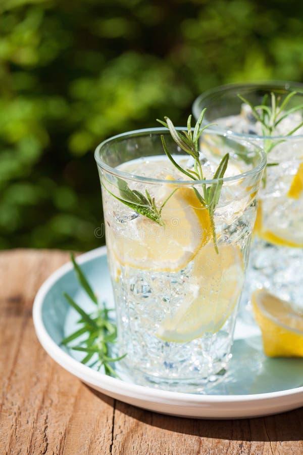 Bevanda di rinfresco della limonata con i rosmarini in vetri fotografia stock