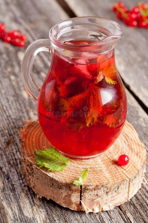 Bevanda fredda della bacca di estate (succo, cocktail, tè della frutta) con la menta fotografia stock libera da diritti