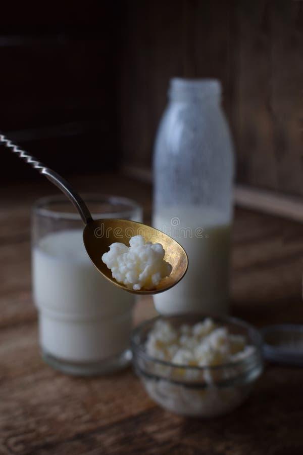 bevanda o yogurt della Acido-latteria in bottiglia che viene dai grani del kefir e munge su fondo di legno Fotografato con lig na fotografia stock libera da diritti