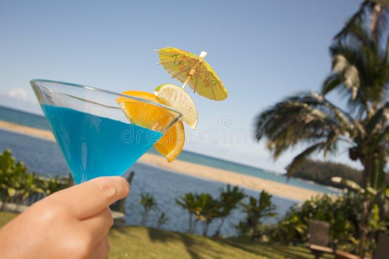 Bevande tropicali fotografie stock