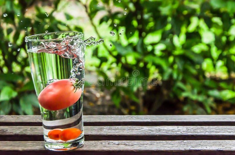 Bevattna att plaska och tomaten i exponeringsglaset av vatten på naturbackg arkivfoto