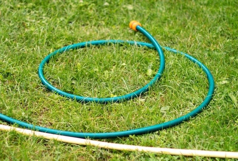 bevattna för slanglawnvatten royaltyfri bild
