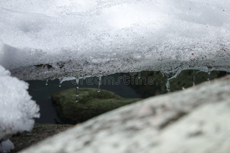 Bevattna och stenar på kustlinjen under den smältande isen royaltyfri foto