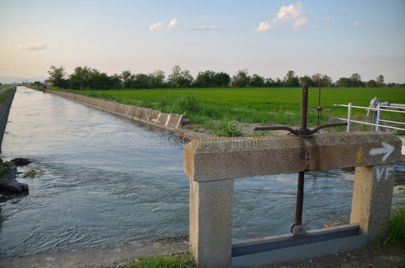 Bevattningkanal nära risfälten royaltyfria bilder