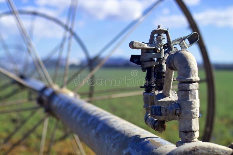 bevattningsprinkler fotografering för bildbyråer