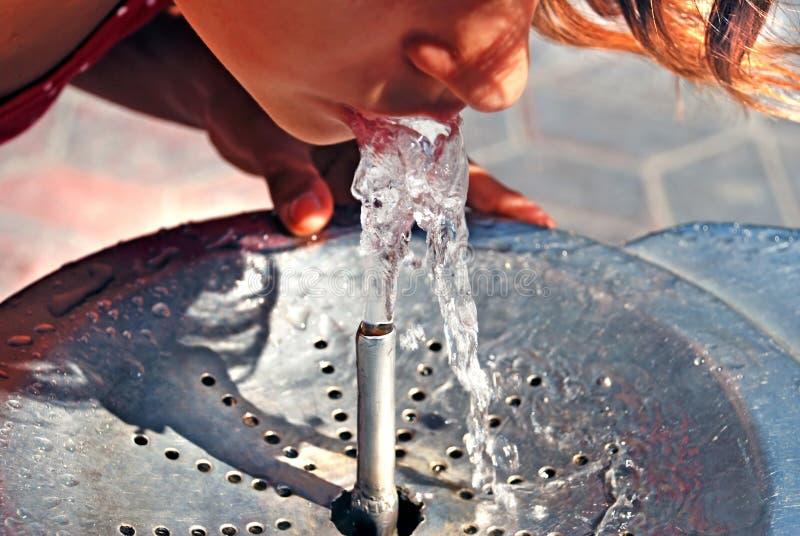 Bevendo dalla fontana di acqua fotografia stock