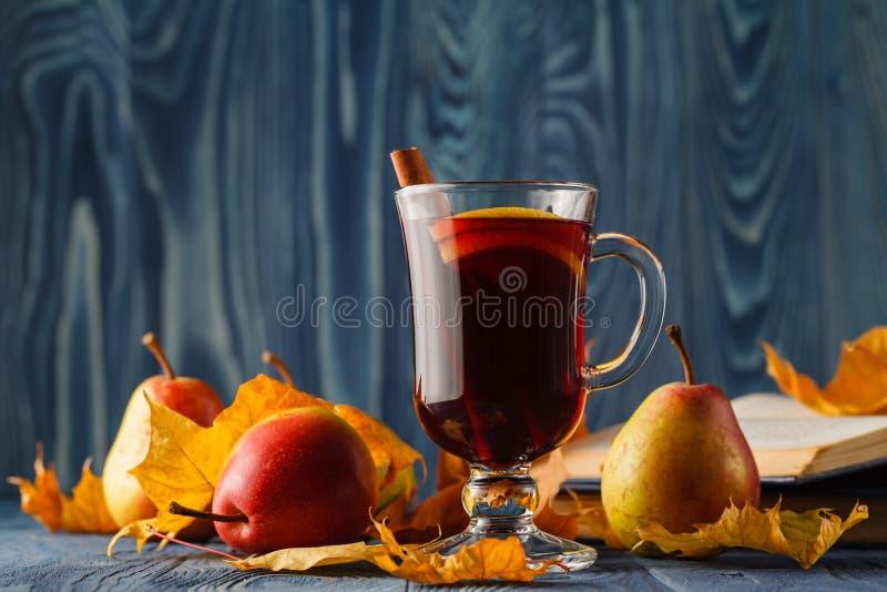 Beverag temperado quente tradicional ferventado com especiarias da estação do inverno do álcool do vinho fotografia de stock