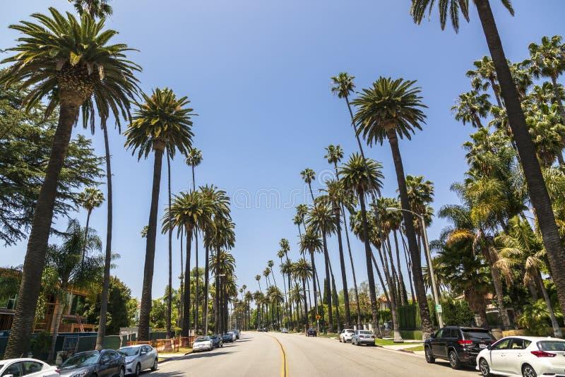 Beverly Drive, Beverly Hills, California, los Estados Unidos de América, Norteamérica fotos de archivo