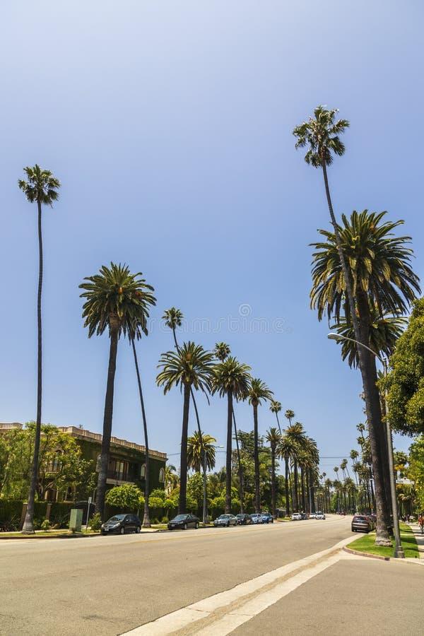 Beverly Drive Beverly Hills, Kalifornien, Amerikas förenta stater, Nordamerika arkivfoton