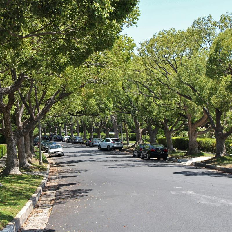 Beverly Hills arkivfoton