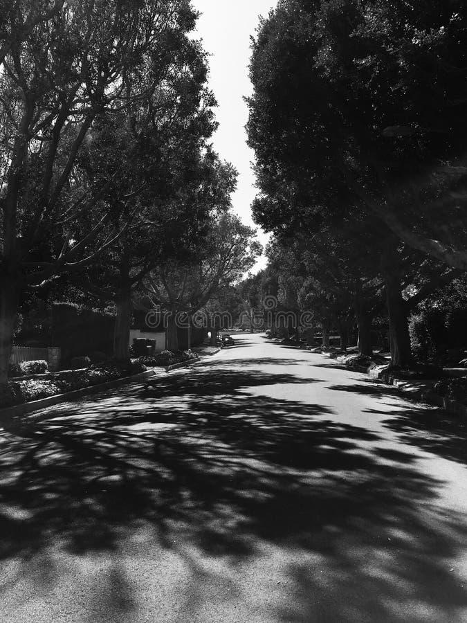 Beverly Hills fotografering för bildbyråer