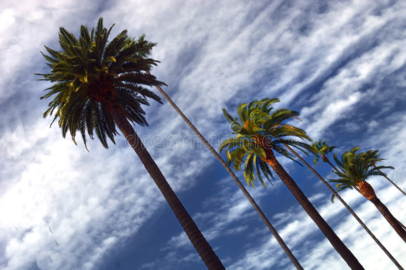 Beverly Hills gömma i handflatan fotografering för bildbyråer