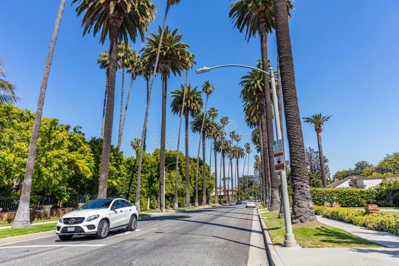 Beverly Hills LA Kalifornien, USA Palmtr?d och bilar arkivfoton