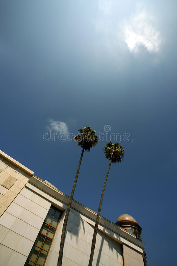 Beverly Hills. Palm Trees on Sunny Day royalty free stock photography