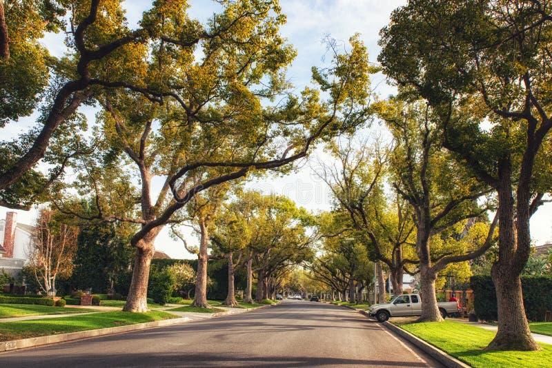Beverly Hills Street Kalifornien, USA fotografering för bildbyråer