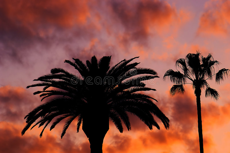 beverly hills, zachód słońca zdjęcia royalty free