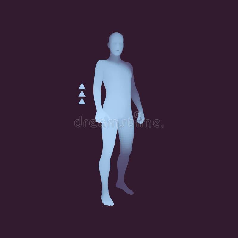 Bevindende mens 3D Menselijk Lichaamsmodel Het element van het ontwerp Mensentribunes op zijn Voeten vector illustratie