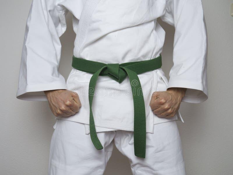Bevindende vechters groene riem gecentreerde vechtsporten royalty-vrije stock foto's