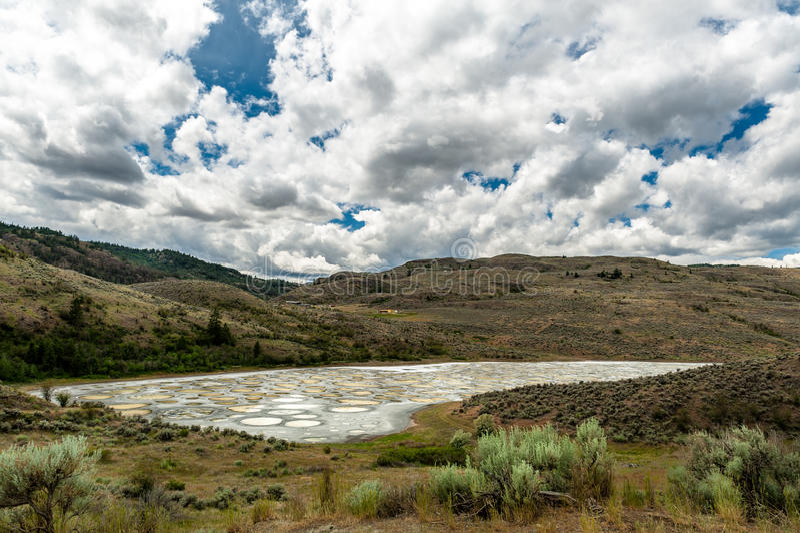 Bevlekt Meer in Okanagan-vallei stock foto's