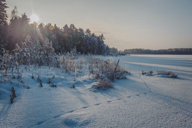 Bevriezend meer met sneeuw bij zonsondergang wordt behandeld die Voetafdrukken op een sneeuw behandeld meer royalty-vrije stock afbeelding