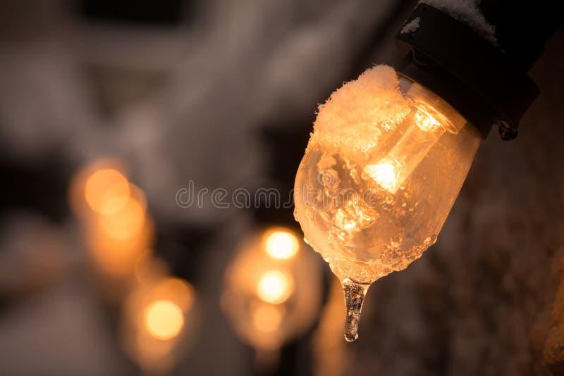 Bevroren aangestoken gloeilamp stock fotografie