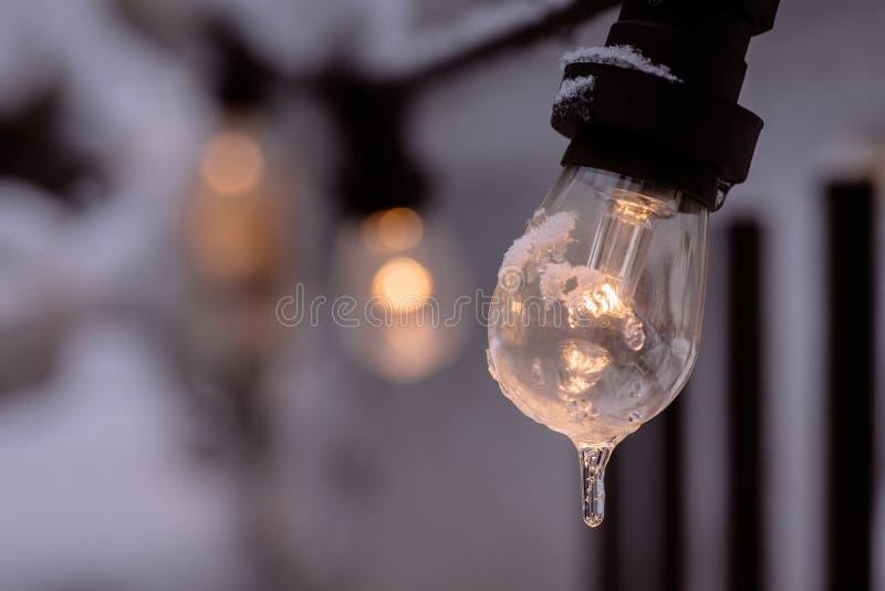 Bevroren aangestoken gloeilamp royalty-vrije stock foto