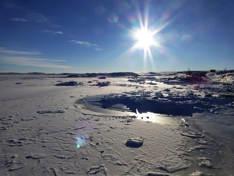 Bevroren Baai Antarctica stock afbeeldingen