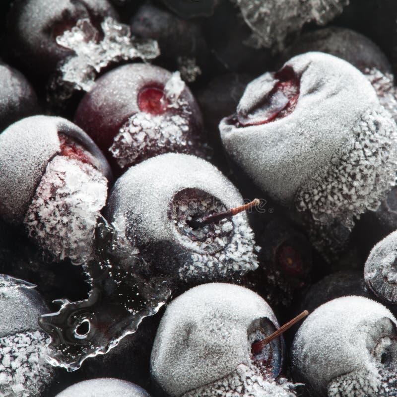 Bevroren bessen in diepvriezer stock foto
