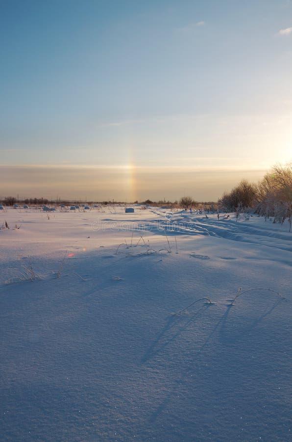 Download Bevroren Bomen Op Sneeuwgebied. Stock Foto - Afbeelding bestaande uit seizoen, sneeuw: 29514630