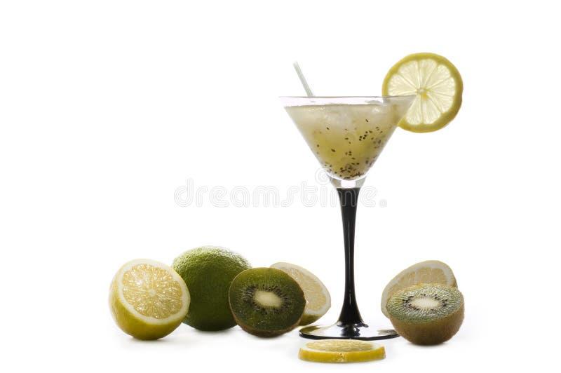 Bevroren cocktail royalty-vrije stock foto