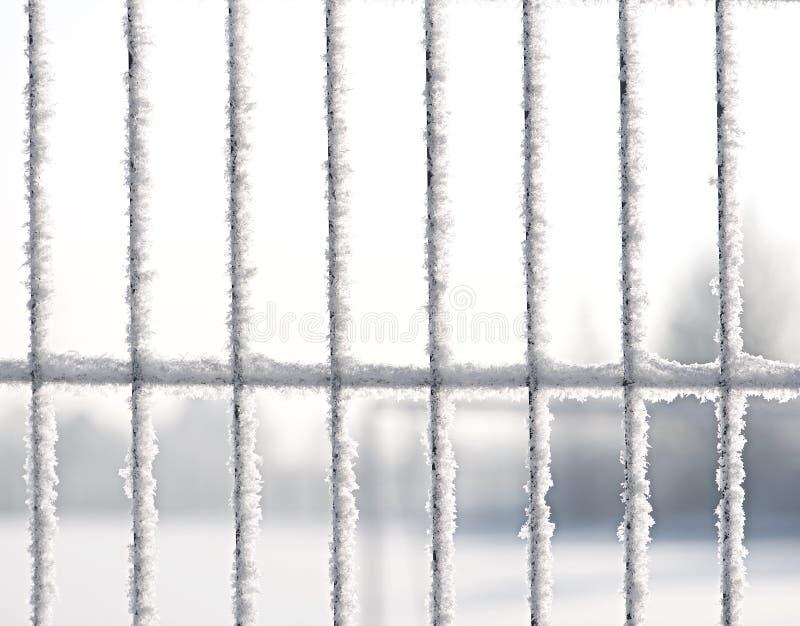 bevroren De achtergrond van de winter Details van bevroren poort royalty-vrije stock afbeelding