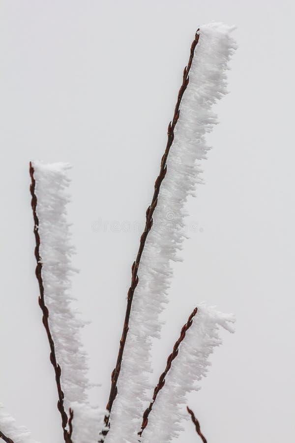 Bevroren de Winterlandschap in Sichuan, China royalty-vrije stock afbeelding